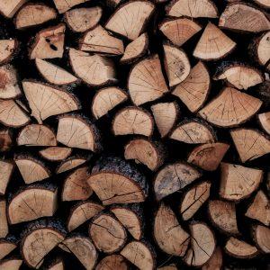 tencel lyocell issu de la pulpe de bois tencelle tencele